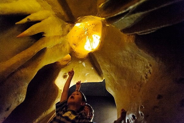Photo: children at Geology Museum