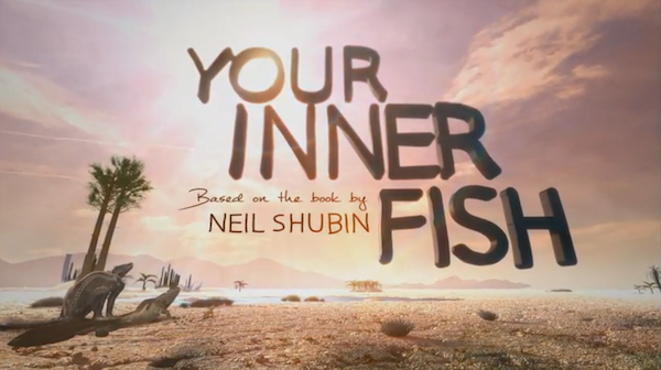Your Inner Fish promo