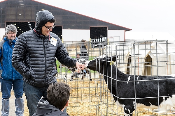 Photo: Pablo Gomez with calf