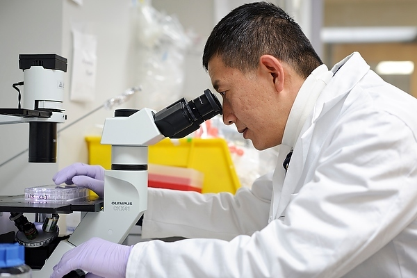 Photo: Yingnan Yin in lab with microscope