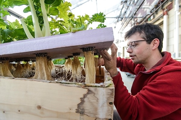 Photo: Rooftop greenhouse at Aldo Leopold Residence Hall