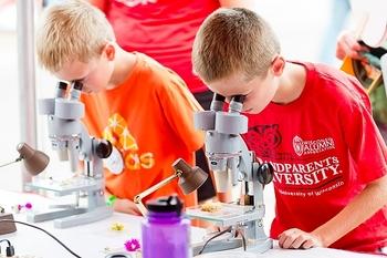 Photo: Boys looking into microscopes
