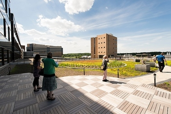 Photo: 'Green roof' at Signe Skott Cooper Hall