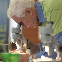 Photo: Wisconsin Science Festival